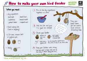 Learning Learning Zone Wildlife Trusts Worksheets