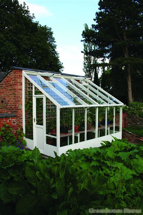swallow dove  lean  greenhouse greenhouse stores