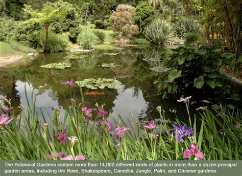 Exploring The Botanical Gardens And Art Collections Of Huntington Library Botanical Garden