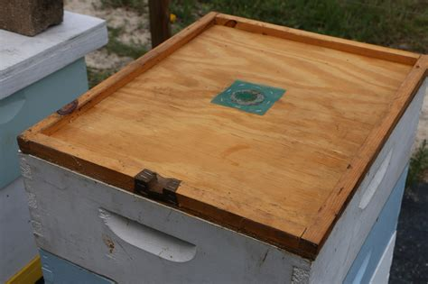 top bar hive ventilation hives and bee yards volusia beekeepers
