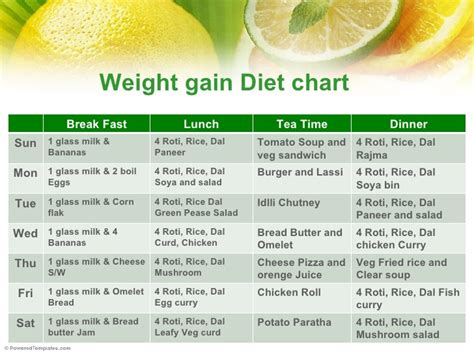 10 Best Weight Gaining Foods by Archives Dogsnews