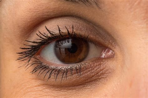 science of eye bags the cause and the cure