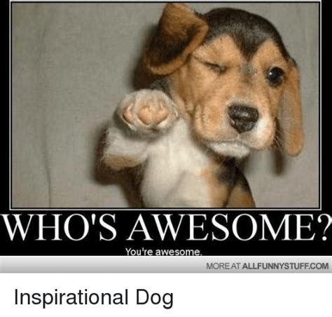 memes  whos awesome youre awesome whos