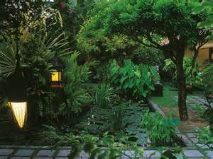 tropical landscaping ideas tropical landscaping design ideas hgtv