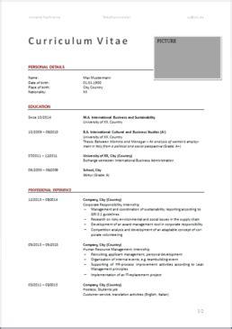 Lebenslauf Englisch Vorlage Ingenieur lebenslauf downloaden englisch e fellows net