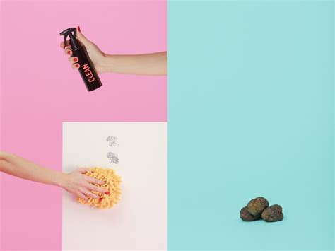 human shoo on dogs shoo x grooming kit the dieline packaging branding design innovation news