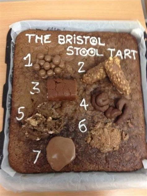 Pasty Stool Constipation by Bristol Stool Scale Cake Amazing Baking