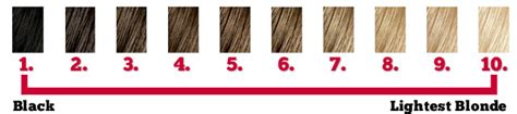 hair color levels hair color shades a selection guide