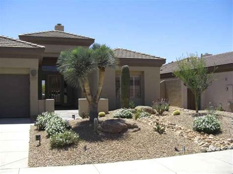 modern front yard desert landscaping with palm tree and