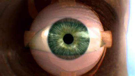 imagenes de ojos por dentro documental hd cuerpo humano al l 237 mite la vista 4 de 4