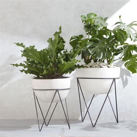 Iris Planter Chevron Stand West Elm West Elm Wall Planter