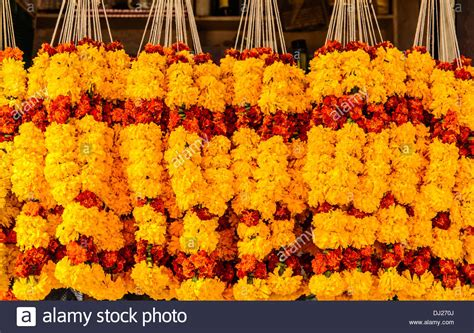 marigold flowers garlands for sale at mapusa market goa