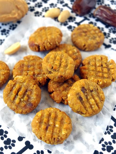 are peanuts for dogs peanut butter pumpkin cookies for dogs