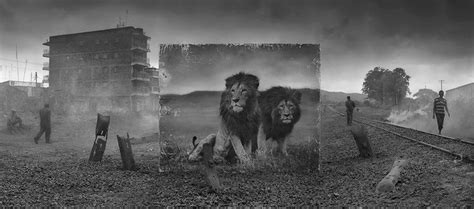 nick brandt inherit the 0692520546 inherit the dust by nick brandt blog totallycoolpix com