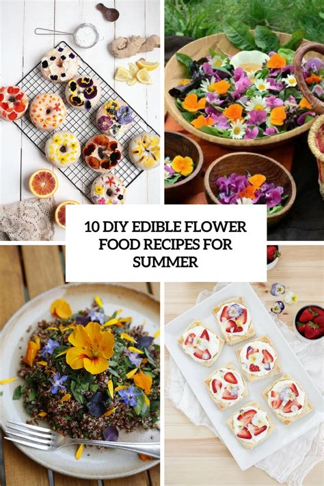 Diy Flower Food | 10 diy edible flower food recipes for summer shelterness