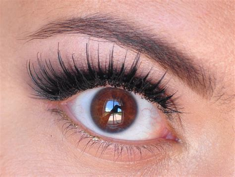 Koko By Heaven Lights by Koko Lashes In Ariel Koko And Foxy Review