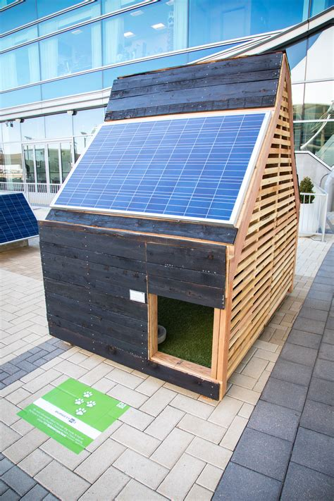 solar dog house check out wag worthy solar doggie digs denver international airport