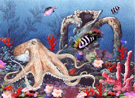 i d like to be the sea in an octopus s octopus