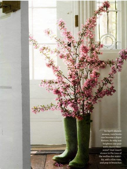 lovely like blossom cute gt 1000 images about cherry blossom love on pinterest