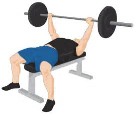 bench for exercise bench press exercise guide tips weight