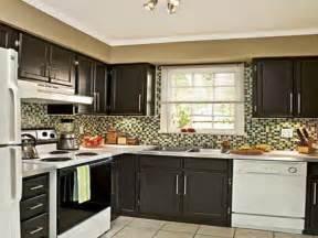 should i paint kitchen cabinets fabulous should i paint kitchen cabinets greenvirals style