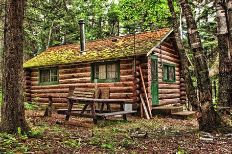 cabin co log cabin how will it last garden co uk
