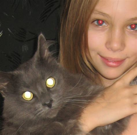 Cat Goddess Nastya Naryzhnaya Collection Free Hd Wallpapers