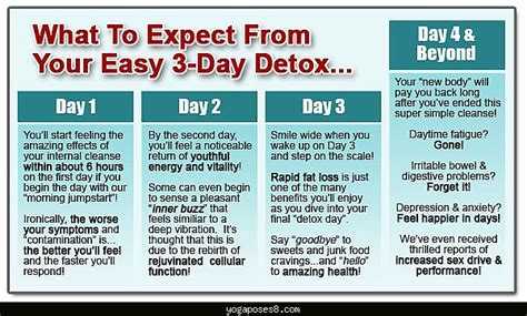 Healthy Detox Diet Cleanse by Healthy Cleansing Diet Poses Yogaposes