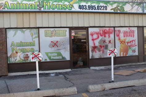 animal house pet store pet store closing after threats highriveronline com