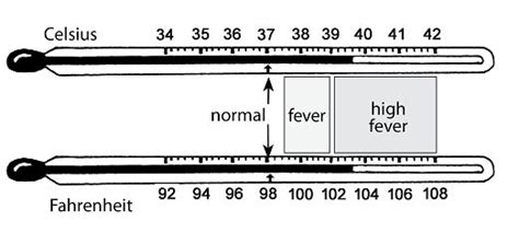 fever temperature chart for adults search ems fever temperature