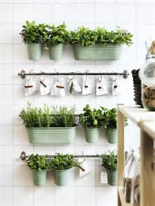 indoor herb garden with fintorp rail and hooks