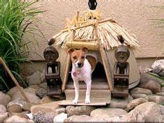 tiki hut dog house oh yeah
