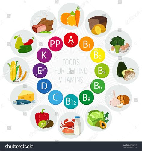 Vitamin Becom Z Vitamin Food Sources Colorful Wheel Chart Stock Vector