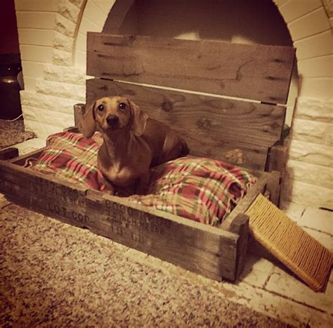 dog bed made out of pallets 17 best images about my stuff vintage car parts made into