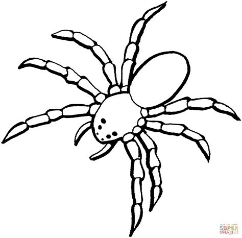 trapdoor spider coloring page spider 5 coloring page free printable coloring pages