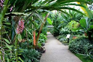 Matthaei Botanical Gardens Conservatory Interior Gardens Michigan Myideasbedroom