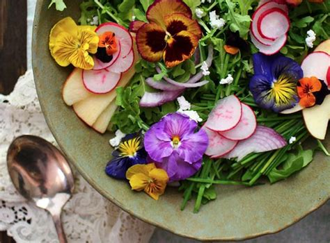 1000 images about edible flowers recipe ideas on edible flower recipes for salads cakes jam and more