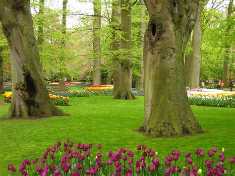garden grove flower festival garden ftempo