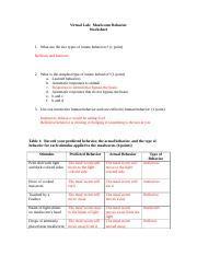 mealworm behavior worksheet geohagan 1 virtual lab