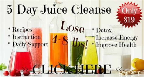 5 Day Juice Detox by 25 Best Ideas About 5 Day Juice Cleanse On