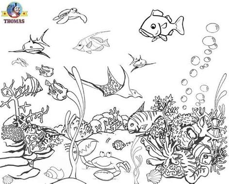 underwater world printable coloring pages 64 best coloring pages images on pinterest sunday school