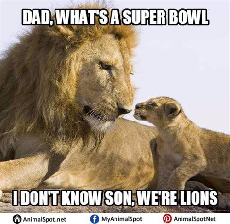 Lion Meme - lion memes