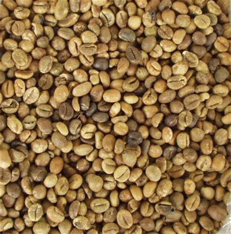 Robusta Coffee ivory coast green robusta coffee beans