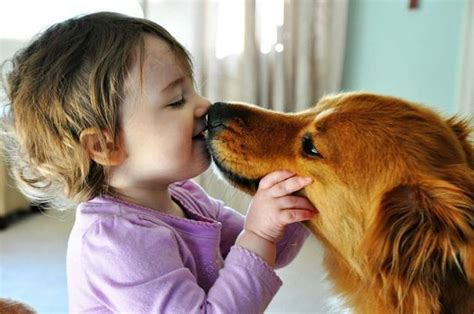 puppy kisses kid kisses 1funny