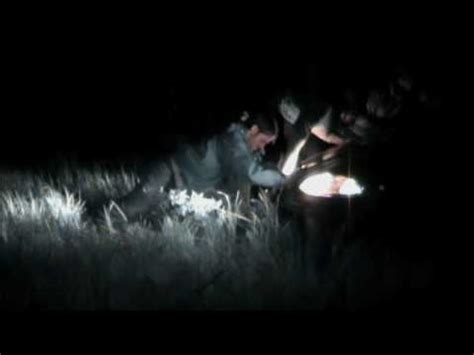 paulding light unsolved mysteries episode the search for the paulding light
