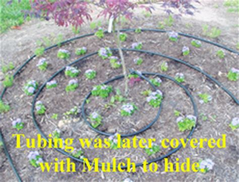 flower bed sprinklers berry hill drip irrigation