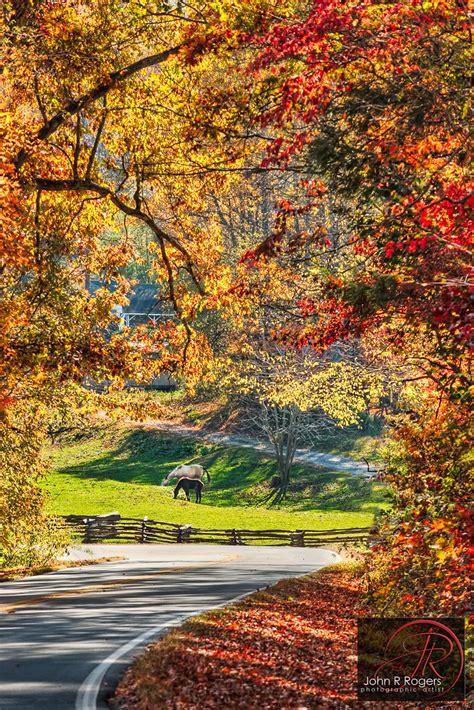 autumn leaves   north carolina  roads