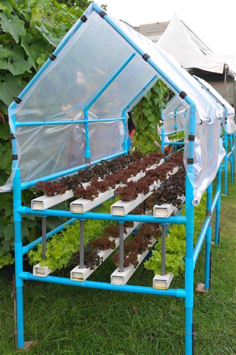 backyard hydroponic garden best 25 hydroponic growing ideas on pinterest