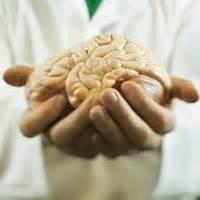 Salep Myrhax otak sangat rakus akan oksigen pd pradipta abadi