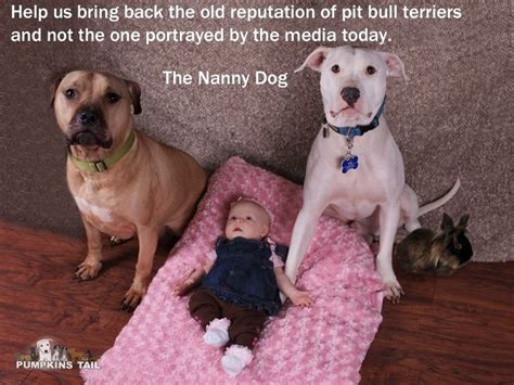 nanny dogs the nanny pit bulls are great